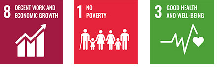 Goal8_Decent work and economic growth, Goal1_No poverty, Goal3_Good health and well-being, Goal17_Partnerships for the goals